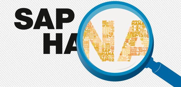 Autostart von SAP HANA Datenbanken einschalten/ausschalten